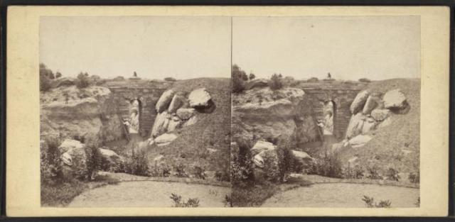 Central Park. The Ramble. (1863. Image Courtesy of the New York Public Library)