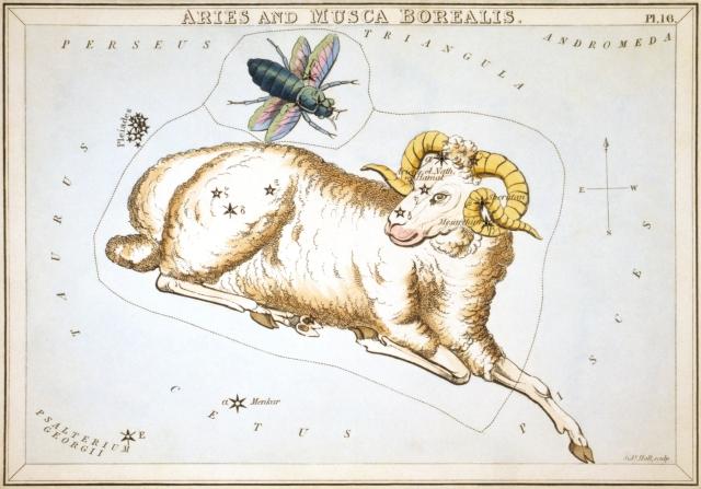 Urania's Mirror- Aries ad Musca Borealis